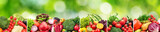Collage fruits and vegetables separated vertical lines on natural blurred background.