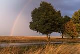 Landschaft Sturm Gewitter Regenbogen