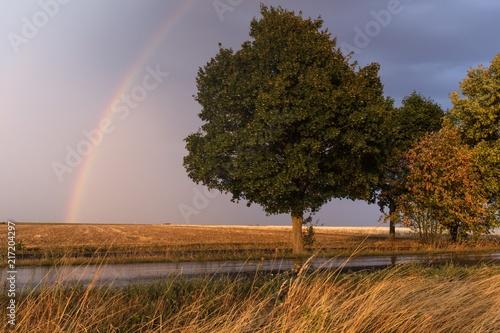 Canvas Landschappen Landschaft Sturm Gewitter Regenbogen