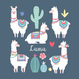 Lama alpaca or guanaco graphic elements. Isolated vector objects, flat design