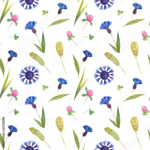 Leinwanddruck Bild Watercolor seamless pattern with wild cornflower and clover