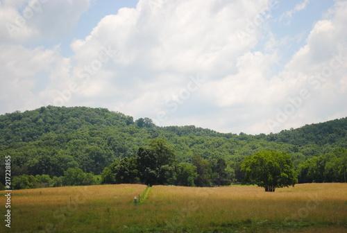 Foto Spatwand Blauwe hemel Country Ride 8