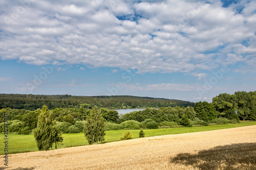 Summer landscape with field, forest, pond and sky