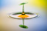 Spiegelung von Wassertropfen - 217274242