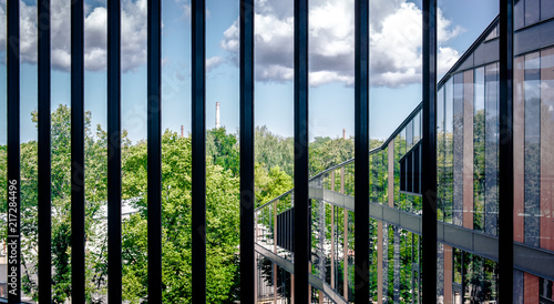 Foto Murales Window of a modern building and view of summer landscape