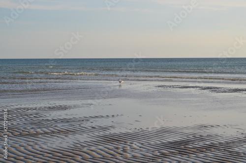 Aluminium Noordzee Nordsee