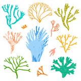 Vector corals and seaweed, algae set. Sea flora