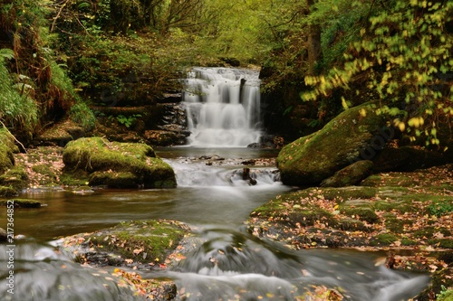 Watersmeet in Devon - 217364852