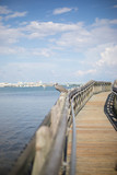 Peaceful Florida Boardwalk Pier with Wild Bird in front of Beautiful Downtown City