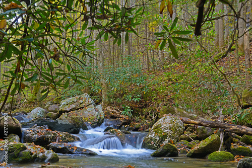 Foto Murales Small waterfall in autumn colors in the Smokies.
