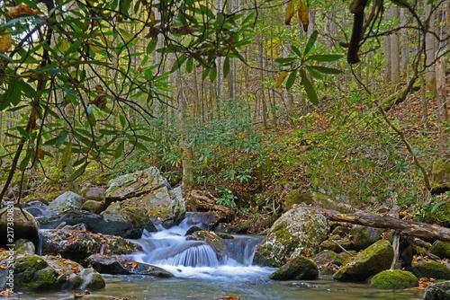 Mały wodospad w kolorach jesieni w Smokies.