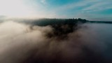 A panning shot above a sunny morning fog just over a forest. - 217395012
