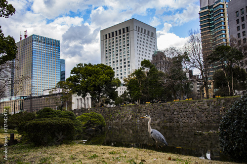 Foto Murales Tokyo - Giappone