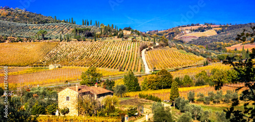 Fotobehang Freesurf Golden vineyards. Beautiful Tuscany landscape in autumn colors. Italy