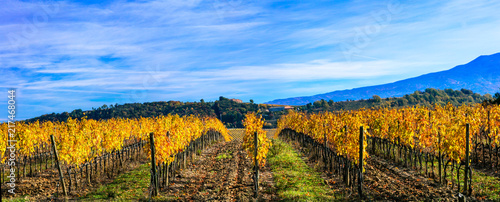 Fotobehang Freesurf Classic Tuscany landscape - rolling hills and wineyards in autumn colors. Italy