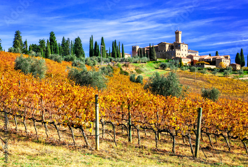 Fotobehang Freesurf Picturesque Tuscany - vineywrds and castles. Banfi-il borgo