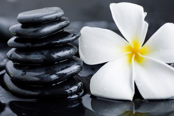 Plumeria flower and spa stones © blackday