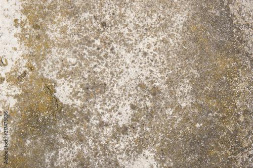 In de dag Betonbehang cemento