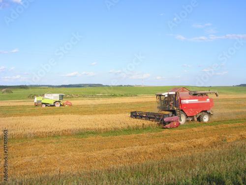 Fotobehang Herfst Combine harvester works at field, Belarus