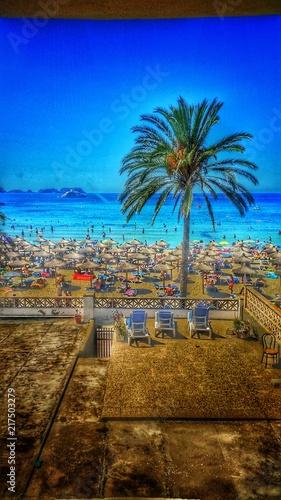 In de dag Tropical strand Der Strand künstlerisch in Scene gesetzt