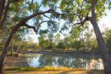 Judds lagoon Queensland, Australia. - 217516659