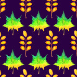 Colorful autumn maple and acacia leaves, hand painted watercolor illustration, seamless pattern on dark blue background - 217534627