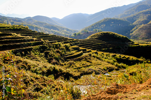 In de dag Rijstvelden Rice agriculture in Sa Pa with terraced view, Vietnam in the mountain area