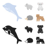 Rhino, koala, panther, hedgehog.Animal set collection icons in cartoon,black style vector symbol stock illustration web.
