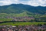 Landschaft im Elsass im Sommer