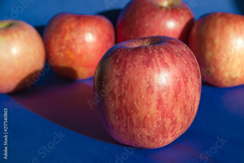 Foto Murales Pink ripe apples on a blue background