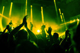 applause, crowd of people applauding to musicians at music festival, silhouettes of clapping hands at concert show - 217568872
