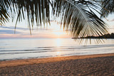 tropical holiday beach at sunset, empty exotic vacation landscape with palm tree, quiet nature, sand and sea - 217569669