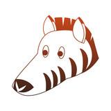 Zebra wild animal vector illustration graphic design - 217569815