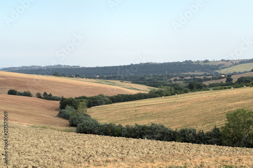 Foto Spatwand Zalm landscape,agriculture,italy,hill,field,panorama,view,countryside,horizon,summer