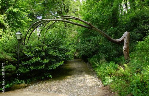 Foto Murales jardin de Sintra