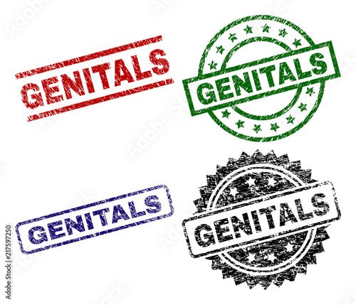 GENITALS seal prints with corroded style. Black, green,red,blue vector rubber prints of GENITALS tag with corroded style. Rubber seals with round, rectangle, medallion shapes.