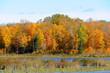 Minnesota lakeshore in the fall