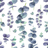 Watercolor vector seamless pattern with silver dollar eucalyptus leaves and branches. - 217645253