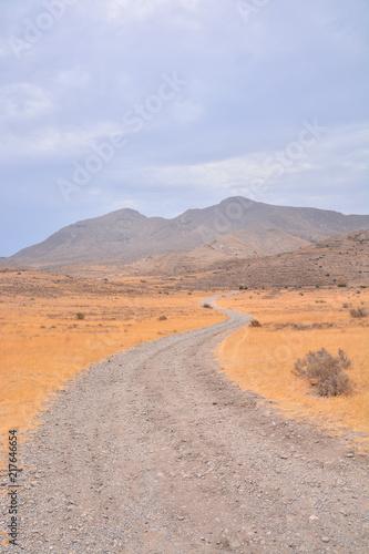 Canvas Zomer Countryside Desert Dirt Path