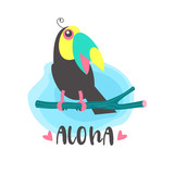 Hello summer. Aloha. Cute cheerful Toucan. Colorful vector illustration, emblem. - 217650474