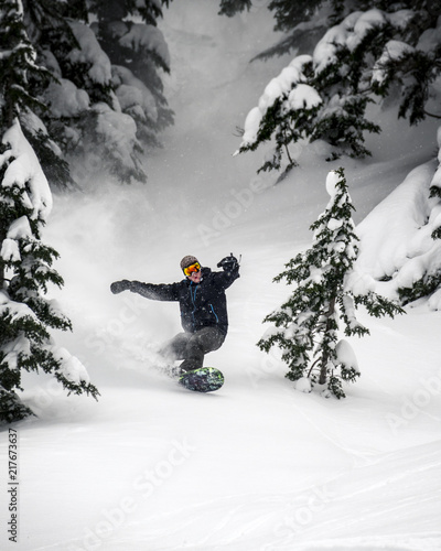 obraz lub plakat Snowboarder Carving Fresh Powder Spray Through Trees