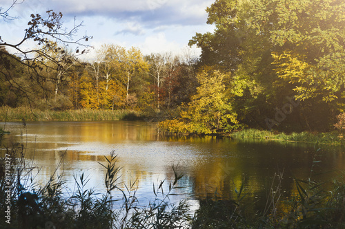Forest lake in autumn. Calm nature background - 217718277