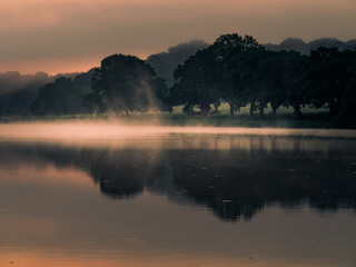 Nature and landscapes photography UK