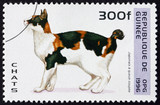 Postage stamp Guinea 1996 Japanese Cat