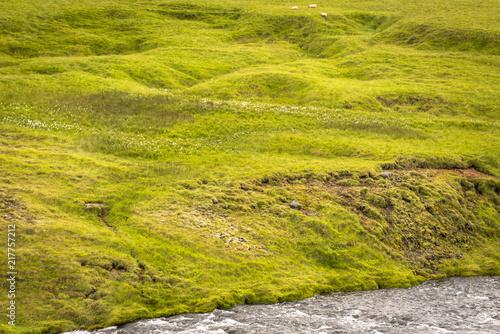 Canvas Pistache Iceland