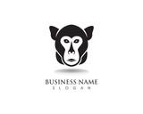 Monkey symbol logo and symbol