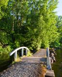 Small bridge at lakeside park summer sunset