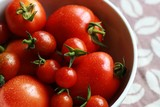frische tomaten in schale III - 217769485