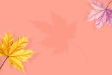 Creative natural autumn background.Yellow and violet maple leaves on a pink background. Free space for text.