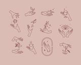 Flat hand symbols pink brown - 217776611